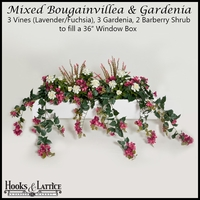 "36"" Window Box Recipe for Mixed Bougainvillea - Lavender/Fuchsia"