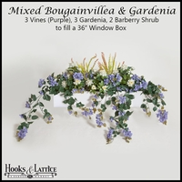 "36"" Window Box Recipe for Mixed Bougainvillea - Purple"