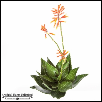 36in. Flowering Aloe, Orange