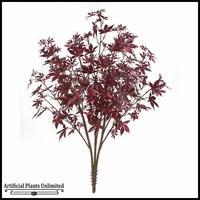 38in. Juvenile Maple Tree Bush - Outdoor