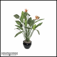 4.5' Bird Of Paradise - Orange|Indoor