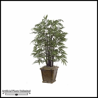 4' Bamboo Palm Tree - Green|Indoor