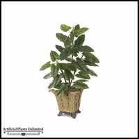 4' Emerald Philo - Green|Indoor