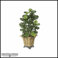 4' Split Leaf Philo - Green|Indoor