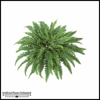 42in. Boston Fern - Green|Indoor