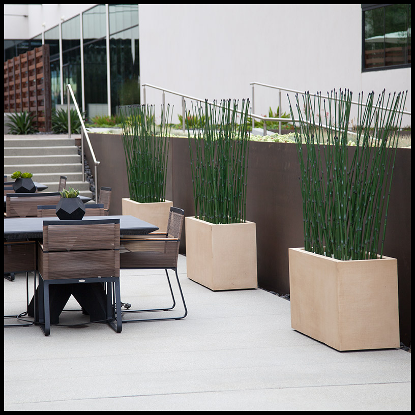 . Artificial Equisetum Plant Partition   Artificial Plants Unlimited