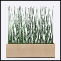 7'L Horsetail Grove in Modern Planter, Indoor