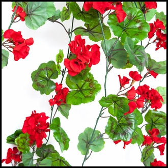 42in. Red Geranium Hanging Vine, Outdoor Rated