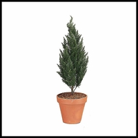 43in.-Outdoor Rated Artificial Cypress