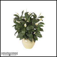 44in. Spathiphylum Bush - Green|Indoor