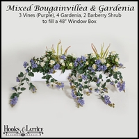 "48"" Window Box Recipe for Mixed Bougainvillea - Purple"