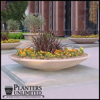 Rosetta Bowl Planter 48in.Dia. X 14in.H