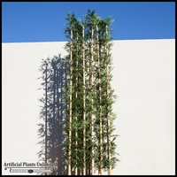72in.L Jumbo Bamboo Grove, Outdoor