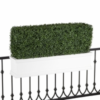 36in. Outdoor Artificial Boxwood Hedge in White Window Box