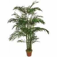 6.5' Areca Palm Tree, Outdoor Rated