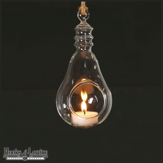 "6.5"" Hanging Glass Light Bulb Terrarium with Moss Option"