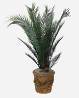 6' Fire Retardant Canariensis Palm 12 Fronds