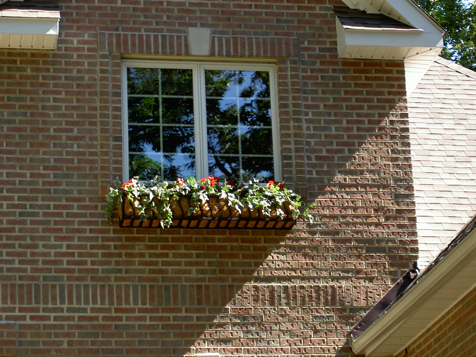 Coir Lined French Window Box On A Brick House Hooks And