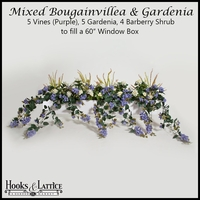 "60"" Window Box Recipe for Mixed Bougainvillea - Purple"