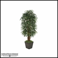 7' Lady Palm Tree - Green|Indoor