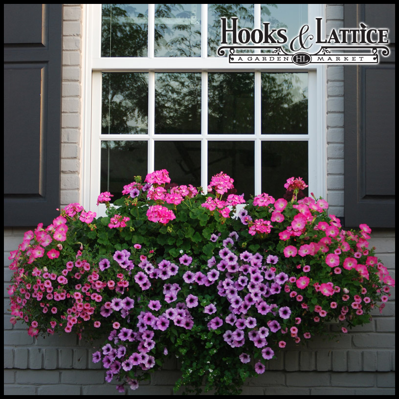 Solera self watering window box planters for Craftsman style window boxes