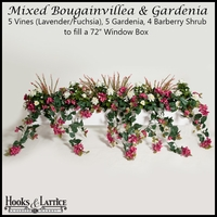 "72"" Window Box Recipe for Mixed Bougainvillea - Lavender/Fuchsia"