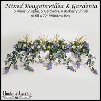 "72"" Window Box Recipe for Mixed Bougainvillea - Purple"