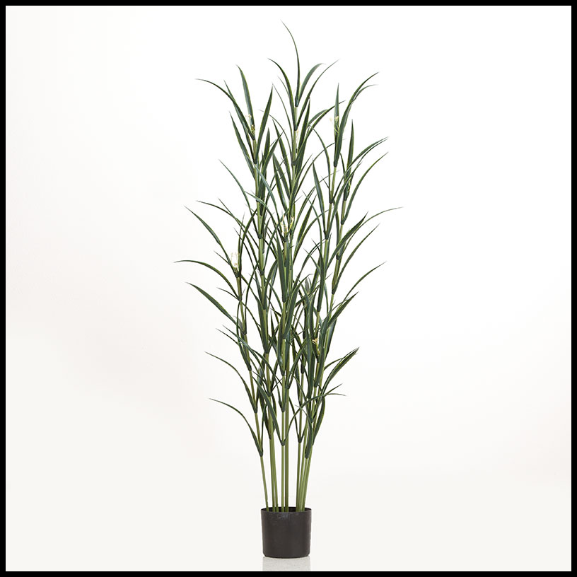 72in pampas grass cluster in weighted base outdoor rated for Purple decorative grass