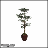 8' Boxwood Shelf Tree - Green | Indoor