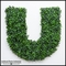 84in.H Living Wall Letter, Indoor