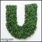 36in.H Living Wall Letter, Indoor