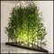 96in.L Jumbo Bamboo Grove in Modern Planter, Outdoor