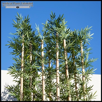 96in.L Jumbo Bamboo Grove, Indoor
