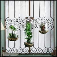 12in. Agave and Succulents in Large Glass Hanging Birdhouse