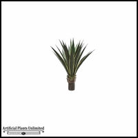 36in. Agave Plant (2 Colors)