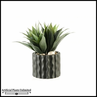 Agave Plant in Round Ceramic Planter with Ripples, 16 in.