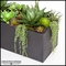 Aloe and Succulent Space Divider with Black Planter 39.5inLx14inWx38inH
