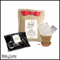 Apple Tree Growing Kit in Burlap Bag
