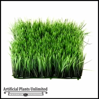 4.5in. H Wheat Grass Mat 10in. Green - Indoor