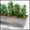 Artificial Boxwood Bush Arrangements for Window Boxes