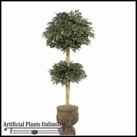 6' Double Sakaki Topiary Tree - Indoor