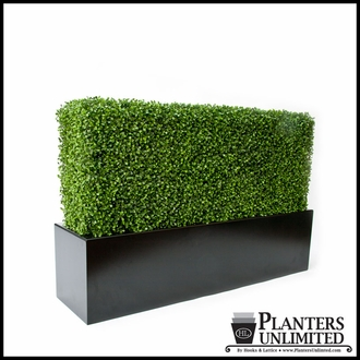 Indoor English Ivy and Boxwood Hedge Mats