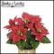 18in. Poinsettia - Outdoor