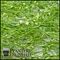 20in. x 12in. Sea Grass Mat - Indoor