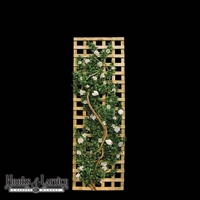 6'H x 2'W Azalea Trellis- Comes in Cream, Beauty, Pink, or Green