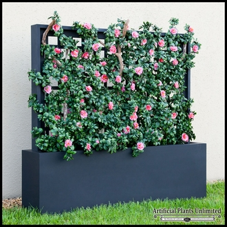 Populated Trellises & Space Dividers in Fiberglass Planters
