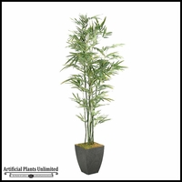 Bamboo Tree in Square Metal Planter, 7'