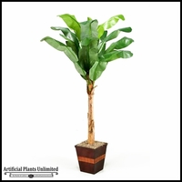 8' Banana Tree in Square Wooden Planter