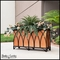 Black Arch Cage Wrought Iron Planters
