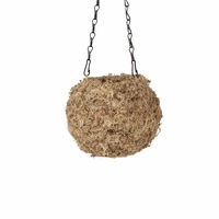 Blonde Large Kokedama Hanging Planter